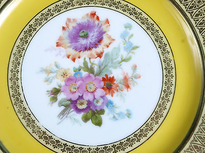 Rare Vintage Collectable Bavaria Tirschenreuth Decorated Plate Heavy Gold