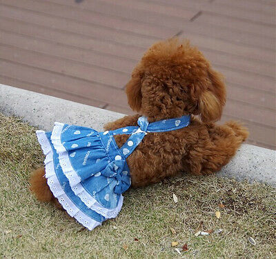 """Small Dog Clothes Apparel Jeans suspenders skirt Lace Dress XS Chest:30cm/12"""""""