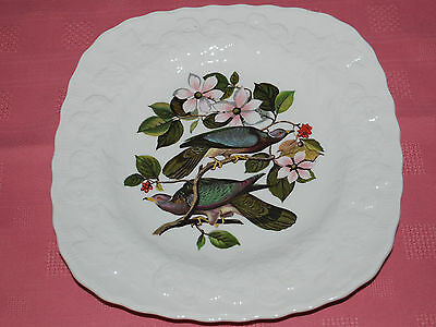 BIRDS OF AMERICA ALRED MEAKIN China  LUNCHEON PLATE DISH BAND-TAIL PIGEON #367