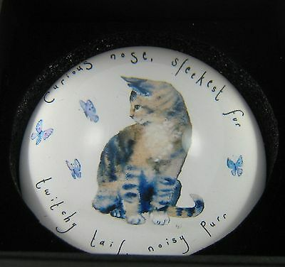 Cat paperweight Grey Tabby Cat  Decorative Dome Glass   Boxed