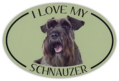 Oval Dog Breed Picture Car Magnet - I Love My Schnauzer - Bumper Sticker Decal