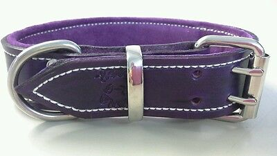 Large Violet Pure Leather Dog Collar with Soft Purple Suede Padded Lining