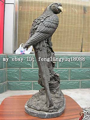 "17""Western pure bronze Copper & marble parrot bird Statuary statue"