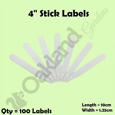 """100 x 4"""" White Plastic Plant Stick in Labels 10cm Seed Tray Garden Markers"""