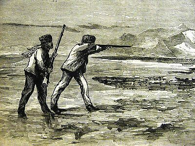 Hunting SHOOTING BEARS on the ICE RIFLES 1871 SPORTS  Antique Print Matted