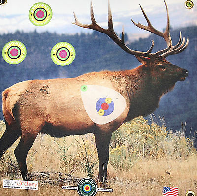 "Archery Target -1500 Plus Shots! Elk With Scoring Zone! 17""x 17"""