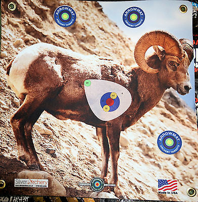 "Archery Target -1500 Plus Shots! Big Horn Sheep With Scoring Zone! 17""x 17"""