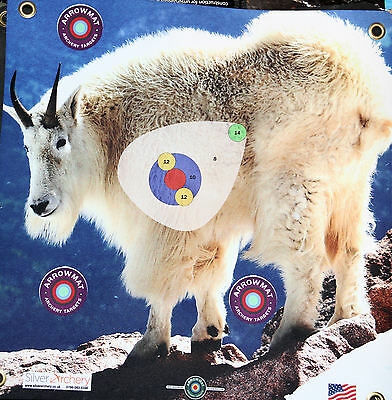 "Archery Target -1500 Plus Shots! Mountain  Goat With Scoring Zone! 17""x 17"""