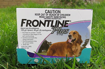 Frontline Plus For Dog 45-88 lbs 3 Month Supply Large Size FREE SHIPPING