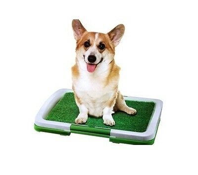 Puppy Potty Grass Mat Dog Trainer Indoor Pee Pad Training Patch Green D15