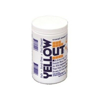 Coral Seas YELLOWOUT Pool Cleaner Yellow Out Algaecide 2lb