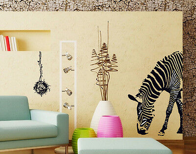 Zebra Animal Zoo Art Letter Character Mural Wall Quote Sticker Decal Inspiration
