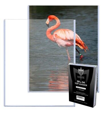 Case 25 Max Pro 20 x 24 Hard Plastic Topload Photo Print Holder Toploaders 20x24