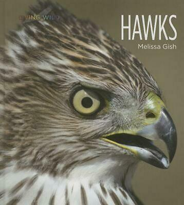 Hawks by Melissa Gish (English) Hardcover Book Free Shipping!