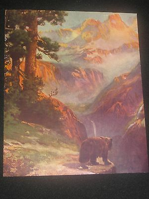 Rare R Atkinson Fox Grizzly Bear In Mountains Vintage Art Print The Sentry 1920S