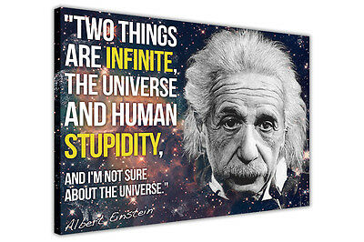 Albert Einstein Stupidity Quote Funny Canvas Wall Art Prints Pictures Posters