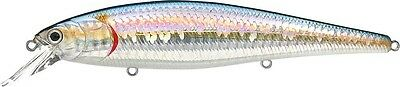 LUCKY CRAFT SW Pointer 128 - 720 Zebra MS American Shad