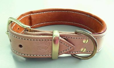 Large Natural Leather Dog Collar & a Suede Padded Inner Lining with Brass