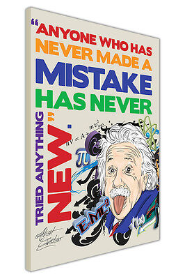 Colour Pop Art Einstein Mistake Quote Funny Pictures Canvas Prints Wall Posters