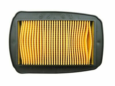 Yamaha YZF R 125 WR 125 cc Air Filter Element