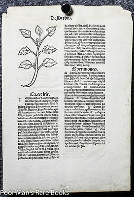 HORTUS SANITATUS INCUNABLE LEAF 1491 TWO WOODCUTS OF HERBS 1481 black letter
