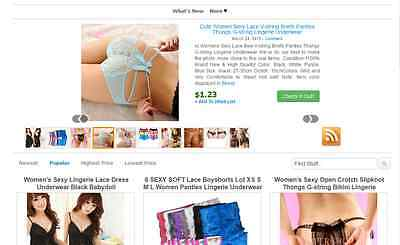 Fully Automated Affiliate Website Business For Sale