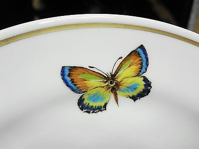 3 Hotel Restaurant Ware Bread & Butter Plates w/ Butterfly 1980's Shenango China