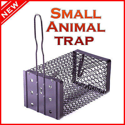 Hunting Live Trap Cage Small Animal Catch Survival Mouse Rabbit Bird Snares