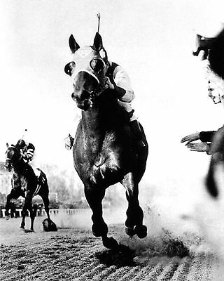 Seabiscuit 02 (Defeats War Admiral In The 1938 Pimlico Special Matc) Photo Print