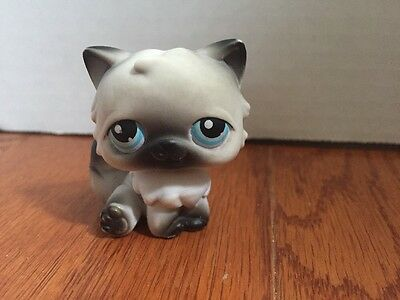 Littlest Pet Shop #60 Gray And Black Persian Cat With Blue Eyes Rare