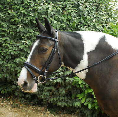 Leather Comfort Bridle, Crank Padded Flash Noseband & Rubber Reins | ALL SIZES