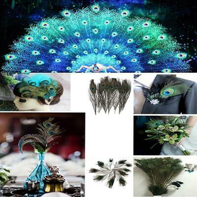100pcs Lots Real Natural Peacock Tail Eyes Feathers 10-12 Inches / 25-30cm US