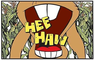 1970s HEE HAW TV show logo fridge magnet - new!