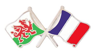 France Flag & Wales Flag Friendship Courtesy Pin Badge - T169