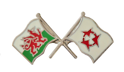 Japan Oita Flag & Wales Flag Friendship Courtesy Pin Badge - T791
