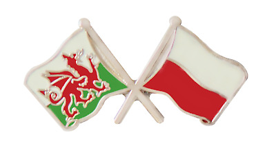 Poland Flag & Wales Flag Friendship Courtesy Pin Badge - T793