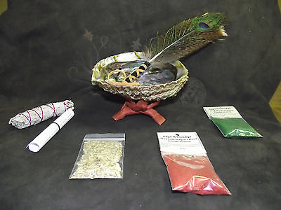 Smudge Kit Abalone Shell White Sage Feather Mugwort Dragons Blood Money incense