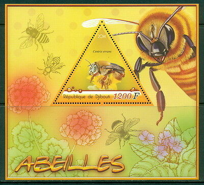 Djibouti-2014-Insects-Bees