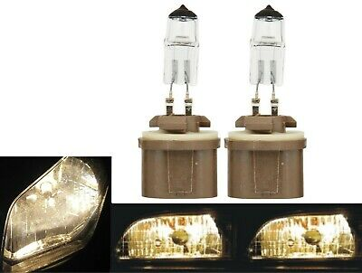 Eiko ClearVision Supreme 899 37.5W One Bulb Fog Light Replacement Plug Play Lamp