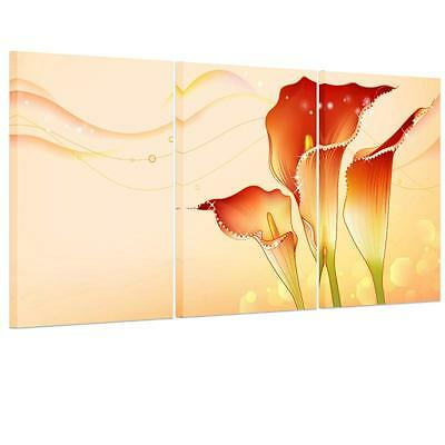Red White Morning Glory Unframed HD Canvas Print Wall Art Picture Split Poster