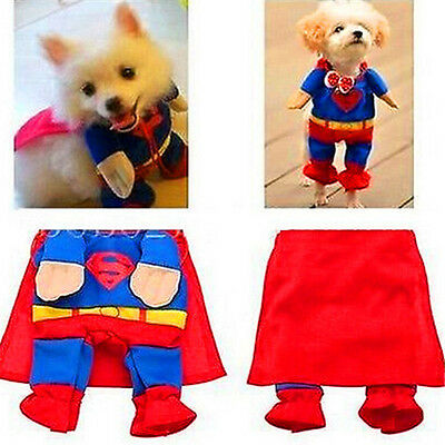 FD1870 □ Cute Pet Cat Dog Puppy Cotton Clothes Costume Superman Suit size Small