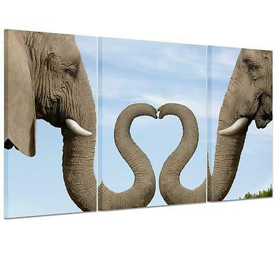 Large Heart Elephant Trunk Unframed HD Canvas Print Wall Art Picture SplitPoster