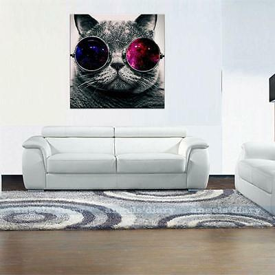 Large Cute Glasses Cat Unframed HD Canvas Print Wall Art Picture Poster