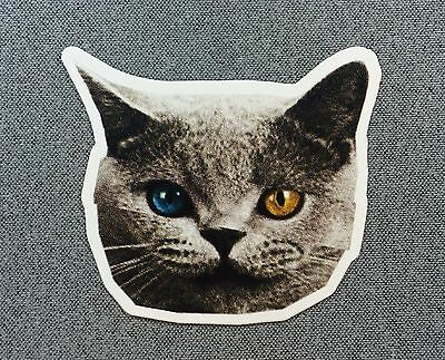 Odd Future Cat Sticker OFWGKTA 4in si