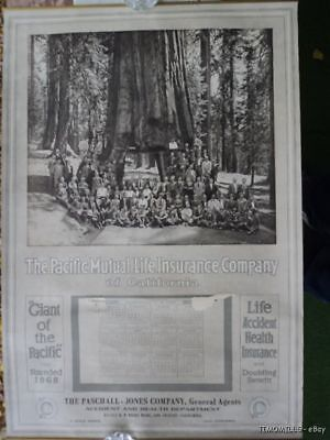 1918 Pacific Mutual Life Insurance of California Wall Calendar of Big Tree Club
