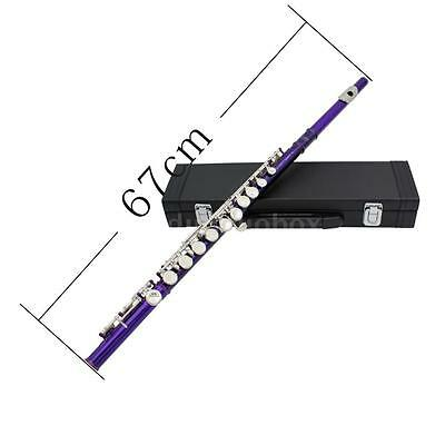 New Cupronickel Westen Concert Band Flute&high Quality Accessories Purple 0L8V