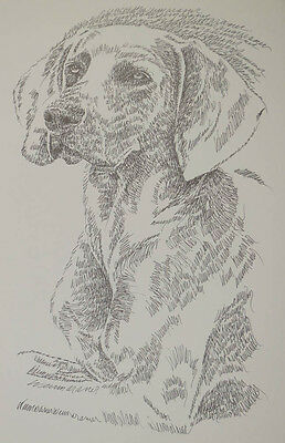 Weimaraner Dog Art Portrait #38 WORD DRAWING Kline adds your dogs name free.