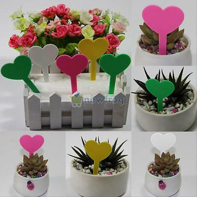 100pcs Plastic Plant T-type Tags Markers Nursery Colorful Garden Labels NEW