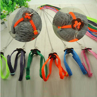 Adjustable Parrot Bird Lizard Harness & Leash Anti-bite Multicolor Soft Collar