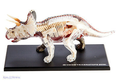 4D Vision Tricerotops Dinosaur Anatomy Model with Bones and Organs